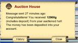 Sold-Auction-Hat