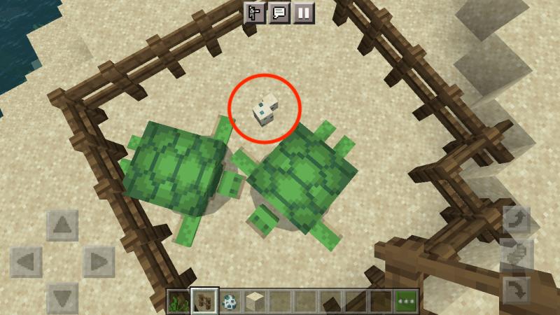 turtle-egg-minecraft