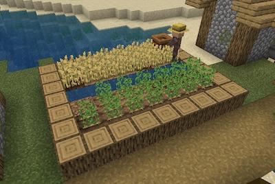 minecraft-village-crop-patch